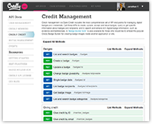 Advanced Open Credit API access for Credly Premier members